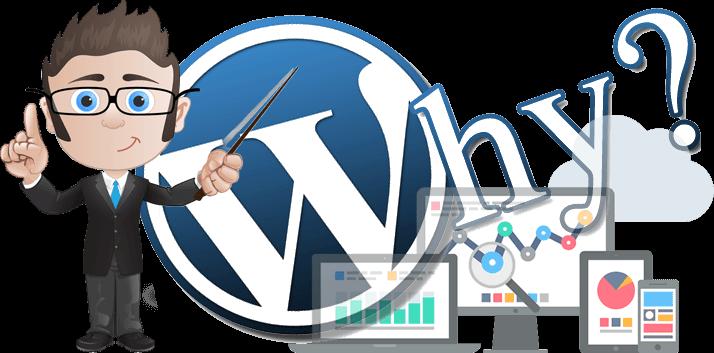 wordpress website design pretoria