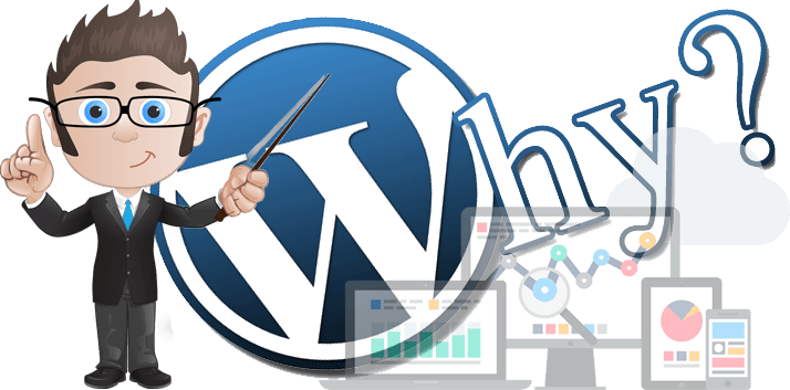 wordpress website design pretoria